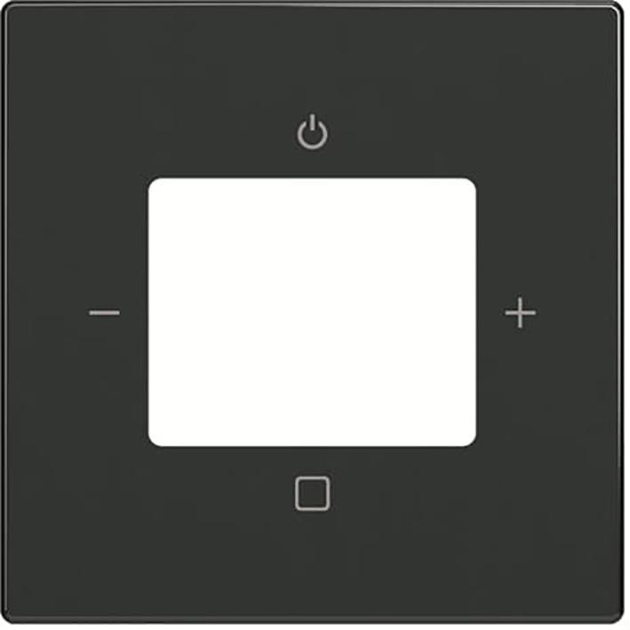 ABB Busch-Jaeger centraalplaat voor digitale radio - future linear/carat/axcent antraciet mat (8252-81-101)