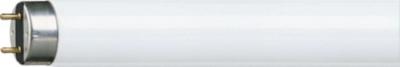 PHILIPS T8 lamp 18W 1300 lumen G13 865 per 25 stuks (63177040)