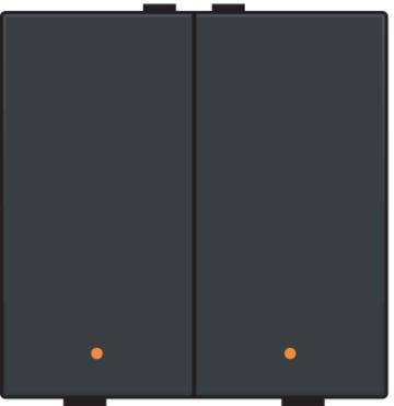 Niko drukknop 2-voudig met LED-indicatie - Home Control antraciet (122-52002)