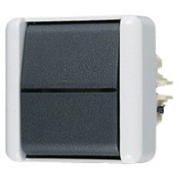 JUNG WG800 2-polige wipschakelaar 10A 250V