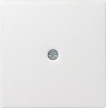 Gira Systeem 55 centraalplaat snoeraftakking verbindingsdoos - zuiver wit mat (027427)
