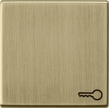 Gira systeem 55 wip met Symbool sleutel brons