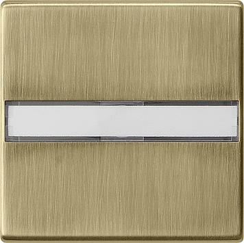 Gira systeem 55 wip met tekstkader brons