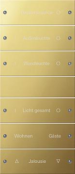 Gira wippenset 6-voudig (3+3) besch. - systeem 55 messing (2136608)
