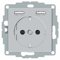 Schneider-Merten systeem M SCHUKO wandcontactdoos met twee USB en randaarde - aluminium (MTN2366-0460)
