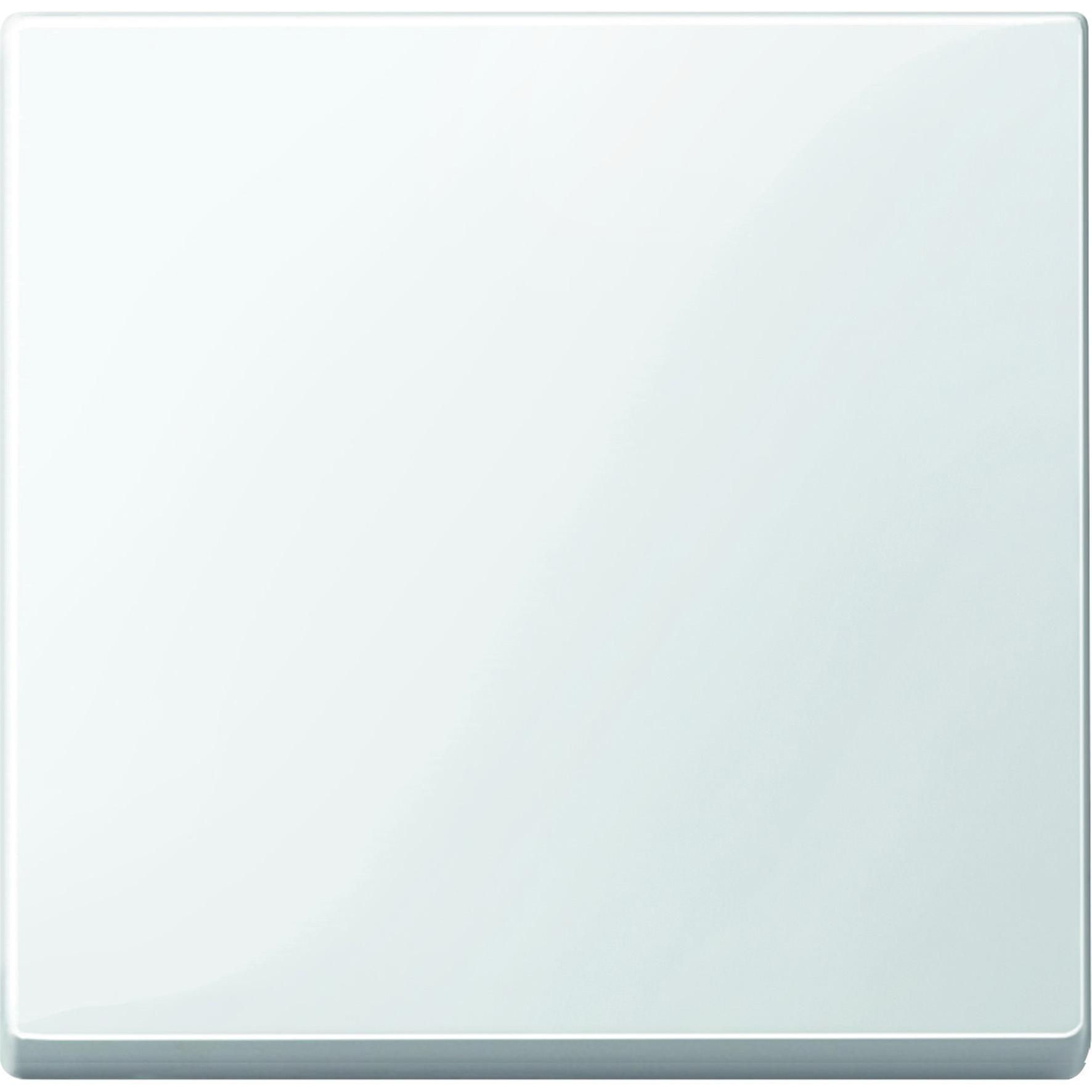 Schneider-Merten systeem M wip - polarwit glanzend (MTN432119)