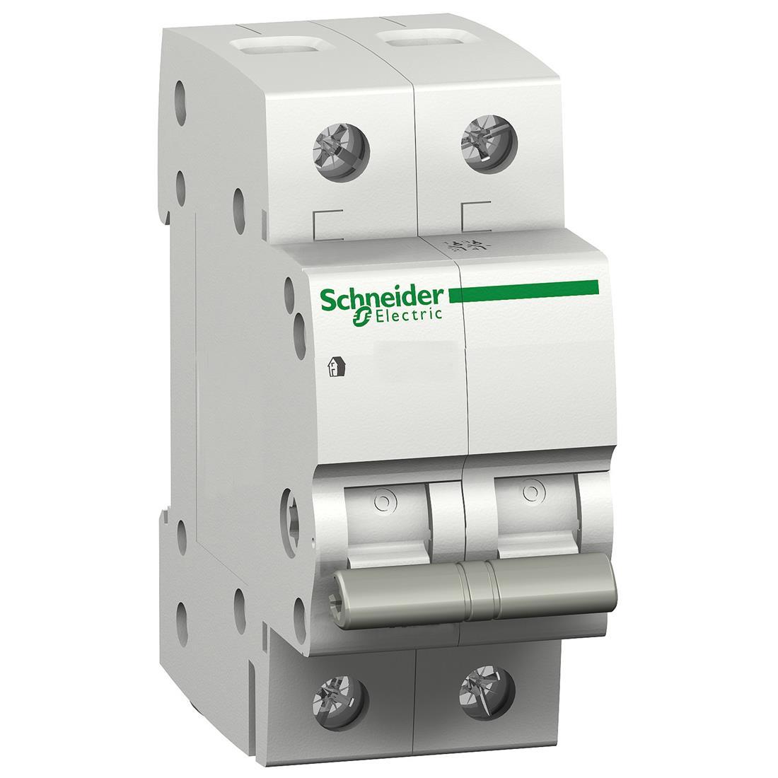 Schneider Electric hoofdschakelaar 2-polig 40A (12460)