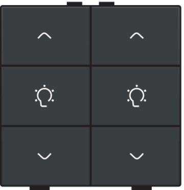 Niko dimbediening 2-voudig - Home Control antraciet (122-51046)
