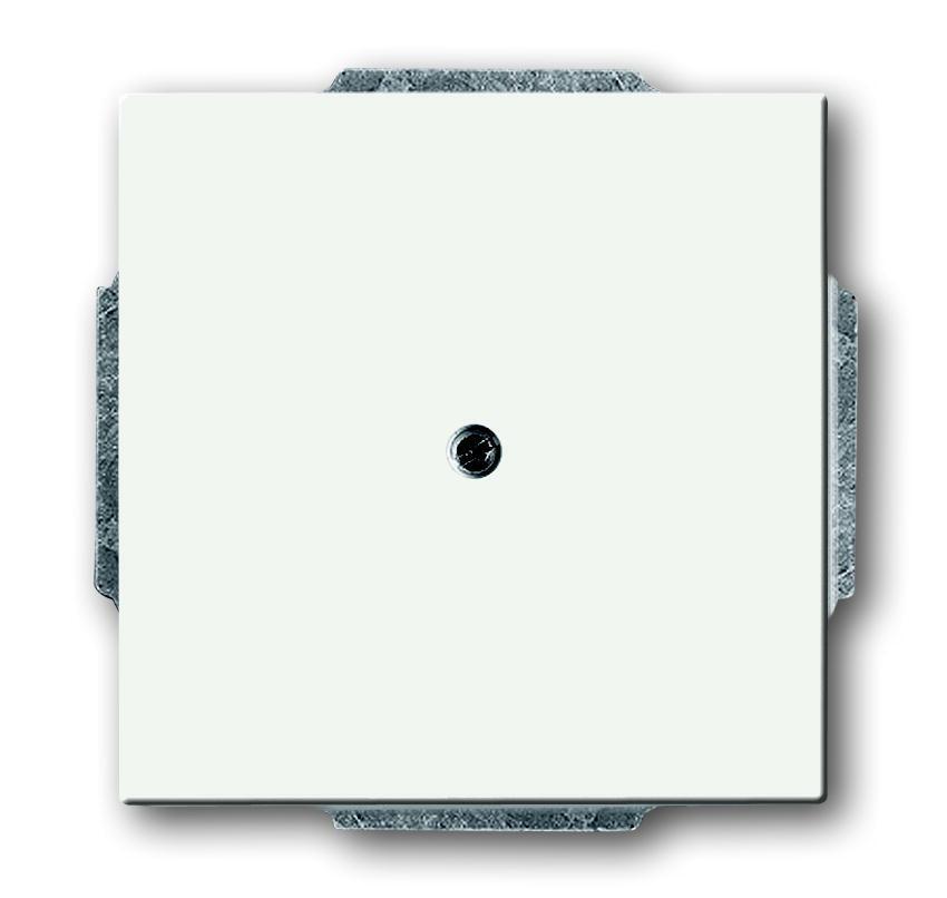 ABB Busch-Jaeger centraalplaat - future linear studiowit mat (1742-884)