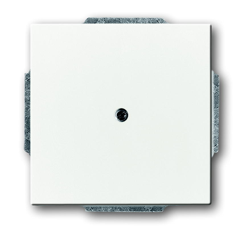 ABB Busch-Jaeger 1749-884 BJ CPL 1xUIT BORING 10MM F