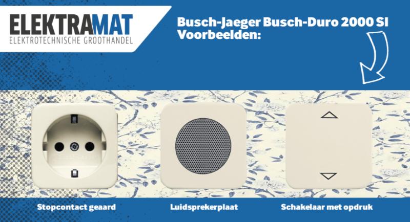 Voorbeeld Busch-Jaeger Duro 2000 SI